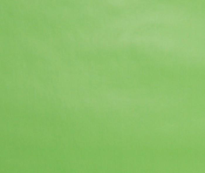 Gavepapir F-0714 Lys grønn